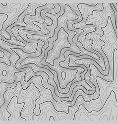Topographic map background with space for copy vector