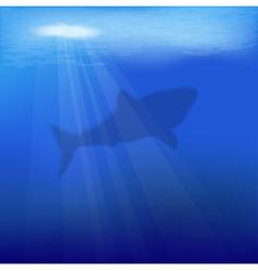 Underwater scene with shark vector