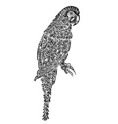 decorated parrot bird black vector image vector image