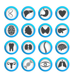 human organs and parts icon set vector image vector image
