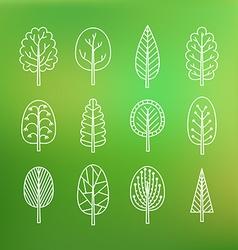 set trees on blurred background vector image