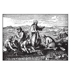 the miraculous catch of fish - jesus fills the vector image vector image