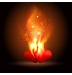 Burning Hearts vector image