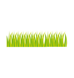 green grass ornament icon design vector image