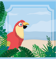 Parrot exotic bird vector