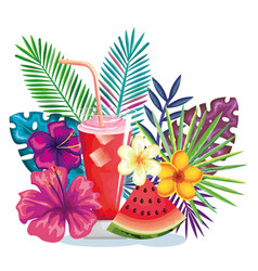 tropical cocktail with watermelon fruit and vector image