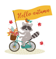 card raccoon rides bicycle with autumn leaves vector image
