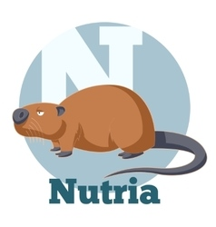 ABC Cartoon Nutria vector image