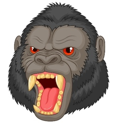 Angry gorilla head cartoon character vector image