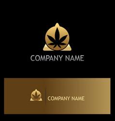 cannabis leaf triangle gold logo vector image