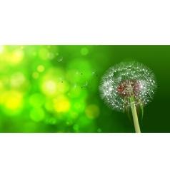 Dandelion on blurred green bokeh background vector