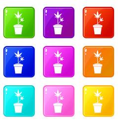 hemp in pot set 9 vector image