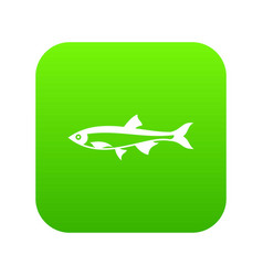 herring fish icon digital green vector image