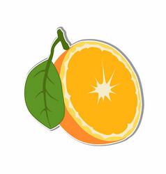 Orange fruit sticker concept vector