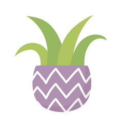 potted plant decoration isolated icon on white vector image