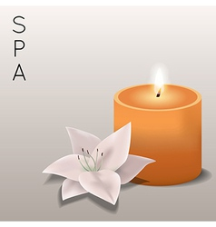 Spa with flower and candle vector