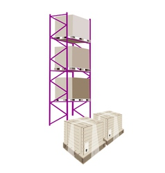Cargo Shelf With Shipping Box in Plastic Wrap vector image