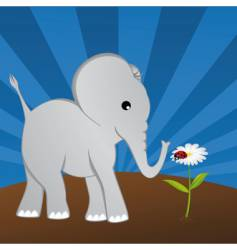 elephant with ladybug on daisy vector image vector image