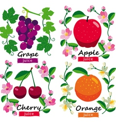Fruits and flowers set vector image vector image