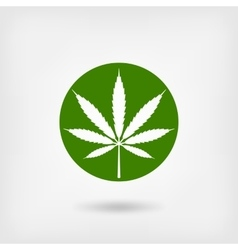 Marijuana leaf in green circle logo symbol vector
