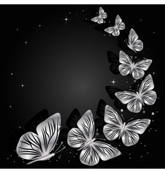 Silver butterflies on dark background vector image