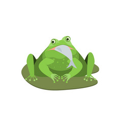 cartoon cute green frog character with fish vector image