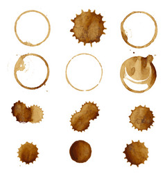 coffee stain big collection vector image