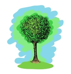 Colorful sketch of a tree vector