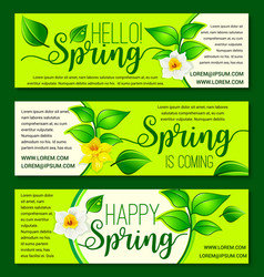 Happy spring springtime flowers banners vector