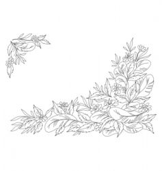 leaves flowers and feathers graphic vector image