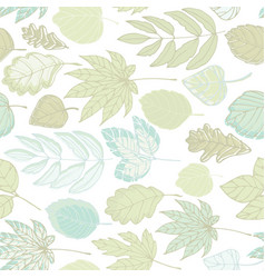 leaves of different trees vector image