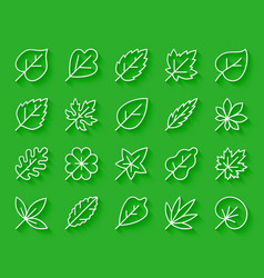 organic leaf simple paper cut icons set vector image