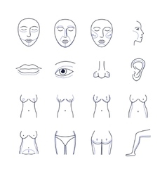 Plastic Surgery Icons Thin Line Set vector