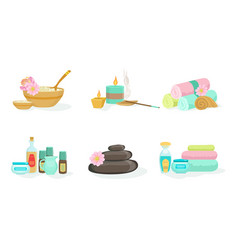 set tools for spa treatments vector image
