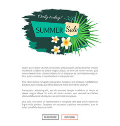 summer sale poster with tropical vanilla flowers vector image