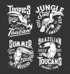 t-shirt print template with toucan tropical bird vector image