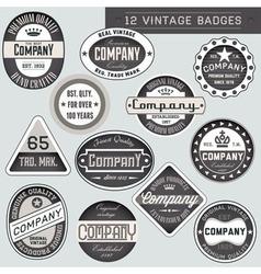 Vintage badges vector image vector image
