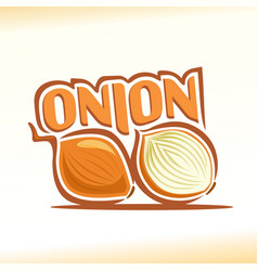 onion abstract still life vector image vector image