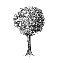 Black and white sketch of a tree vector image