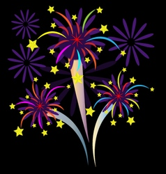 Colorful Firework with stars vector image