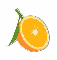 orange fruit sticker concept vector image