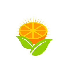 orange logo design template vector image