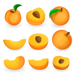 peach icon set cartoon style vector image