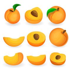 Peach icon set cartoon style vector