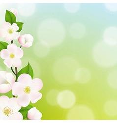 Pastel Apple Tree Flowers Frame vector image