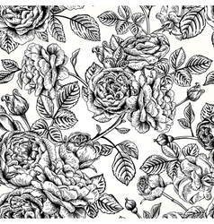seamless vintage pattern with English roses Black vector image vector image