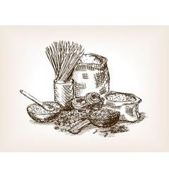 Pasta still life sketch style vector image vector image