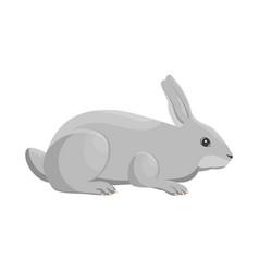 A rabbit vector