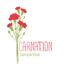 Carnation flowers logo design text hand drawn vector