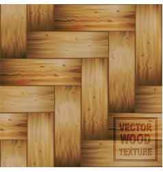 Realistic braided wooden wiker texture vector